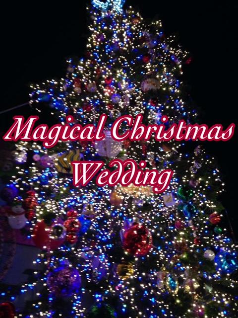 A Magical ChristmasWedding