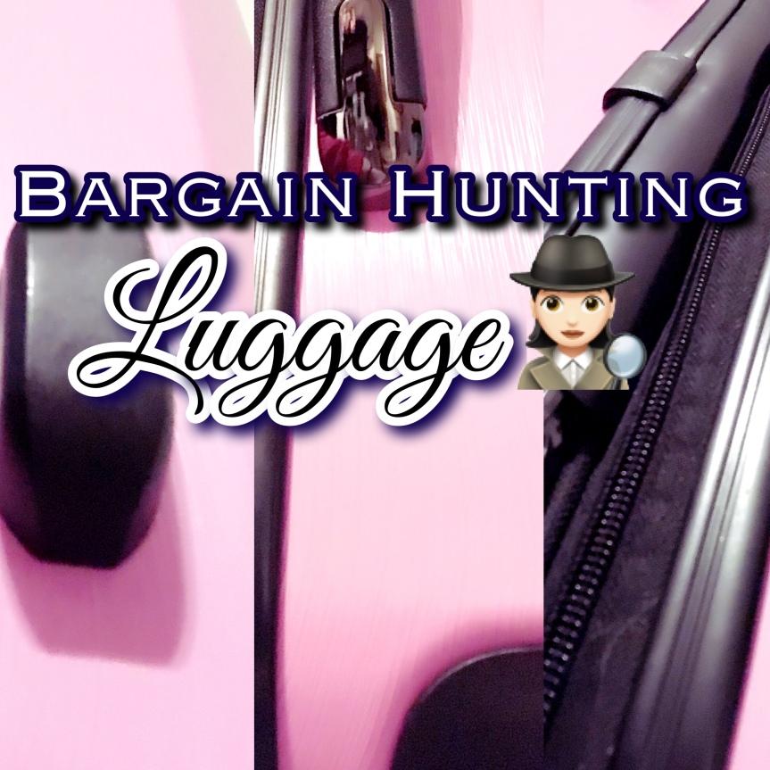 Bargain Hunter: Luggage3
